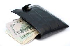 gruby portfel Fotografia Royalty Free