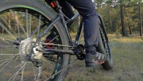 Gruby roweru także dzwoniący fatbike lub opona rower w lato jazdie w lesie zbiory wideo