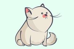 Gruby szary kot z round oczami troszkę Zdjęcie Stock