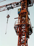 Grue Photos stock