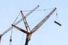 Grue Photographie stock