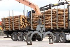 Grue d'agrippeur avec le bois de construction Image stock