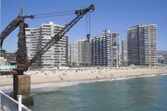 Grue dans une plage à Vina del Mar Photographie stock
