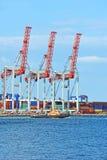 Grue de remorqueur et de cargaison de port Image stock