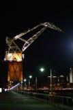 Grue de vieux port Image libre de droits