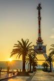 Grue et palmier dans le coucher du soleil images libres de droits