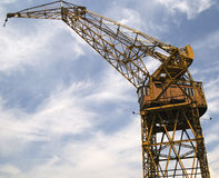 Grue jaune photo stock