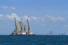 Grue sur la mer Photographie stock