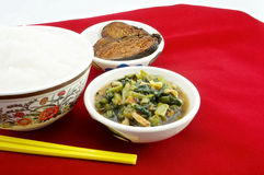 Gruel with vegetarian. Vegetarianism helps keep the body healthy Royalty Free Stock Images