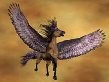 Gruella Pegasus Royalty Free Stock Photography