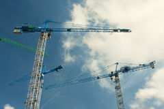 Grues Photos libres de droits