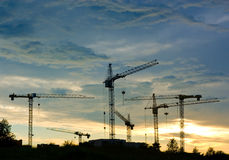 Grues images stock