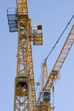 Grues Photographie stock libre de droits