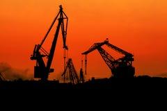 Grues au crépuscule Photographie stock libre de droits