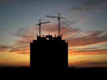 Grues au-dessus de coucher du soleil Photographie stock libre de droits