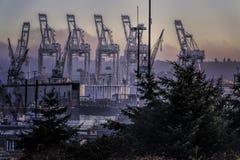 Grues brumeuses de cargaison de matin d'heure bleue sur le Docksn image stock