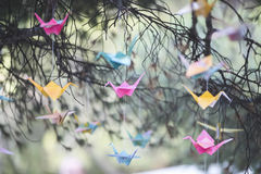 Grues colorées d'origami Photographie stock