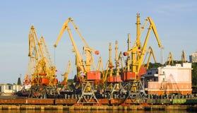 Grues dans le port Image stock