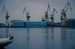Grues dans le port photo libre de droits