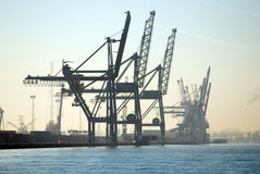 Grues dans le port d'Anvers Photo stock