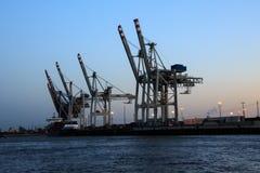Grues dans le port de Hambourg au crépuscule Photographie stock libre de droits