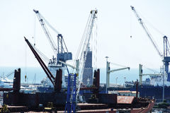 Grues dans le port de Livourne Photo stock