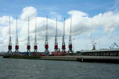 Grues dans le port de Rotterdam Photos libres de droits