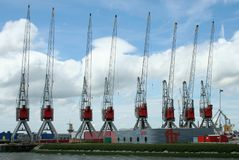 Grues dans le port de Rotterdam Photos stock