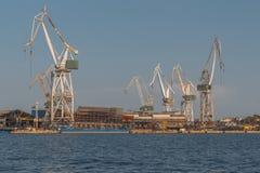 Grues dans le port du Pula photographie stock