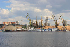 Grues dans le port, Moscou Image libre de droits