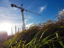 Grues dans le secteur de construction qui fonctionnent photo stock