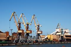 Grues dans un port Photos libres de droits