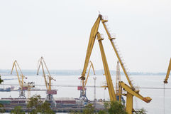 Grues de chantier de construction navale Photo stock