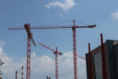Grues de construction photo stock