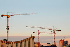 Grues de construction Image libre de droits