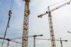 Grues de construction Photo libre de droits