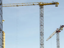 Grues de construction Image stock