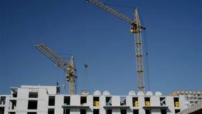 Grues de construction fonctionnantes banque de vidéos