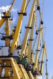 Grues de port Images stock