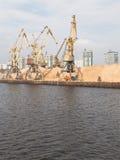 Grues de port Photo libre de droits
