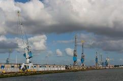Grues de port dans le port de Rotterdam Photographie stock libre de droits