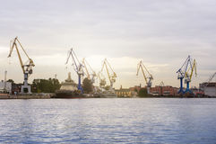 Grues de port maritime Images libres de droits