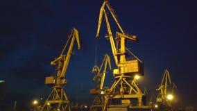 Grues de port maritime au-dessus de coucher du soleil 4K banque de vidéos