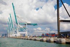 Grues et récipients dans le port de Miami Photos libres de droits