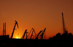 Grues gauches Image stock