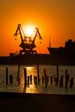 Grues industrielles au coucher du soleil Photographie stock