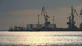 Grues industrielles sur un quai dans un port clips vidéos