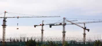 Grues sur le site Photographie stock