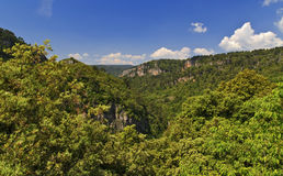 Grueso Forested Gorges De Chateaudouble foto de archivo
