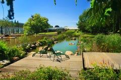 Gruga公园池塘 图库摄影